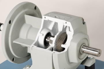DAC Worldwide In-Line Multiple-Reduction Helical Gear Reducer Cutaway | 205-255 | Closeup