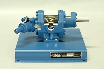 DAC Worldwide External Gear Pump Cutaway | 278-135 | Front View