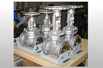 dissectible valve assortment training