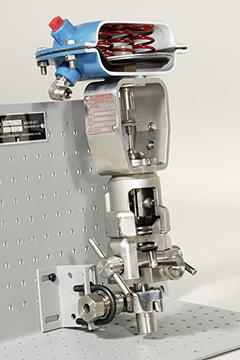 DAC Worldwide Sanitary Diaphragm Valve Cutaway, Stainless   273-410SS   Angle Closeup